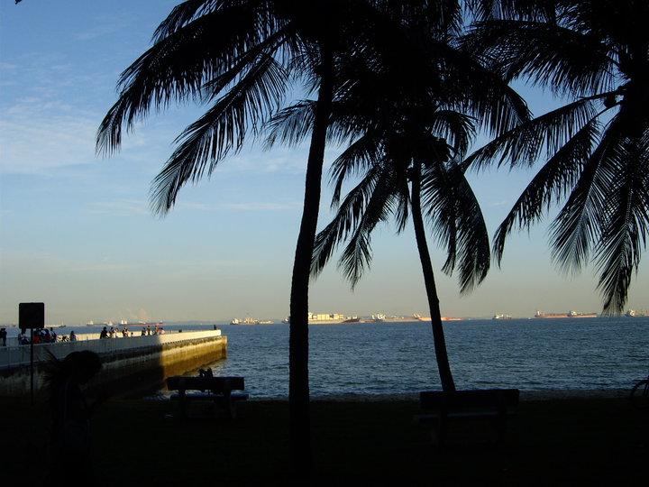 Best Singapore Pictures (5/6)
