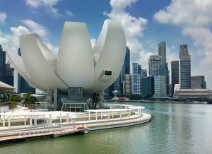 The Singapore Artscience Museum