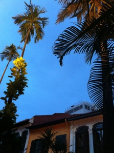 Emerald Hill evening sky